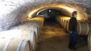 Wijnproevers